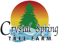 Crystal Spring Tree Farm Logo