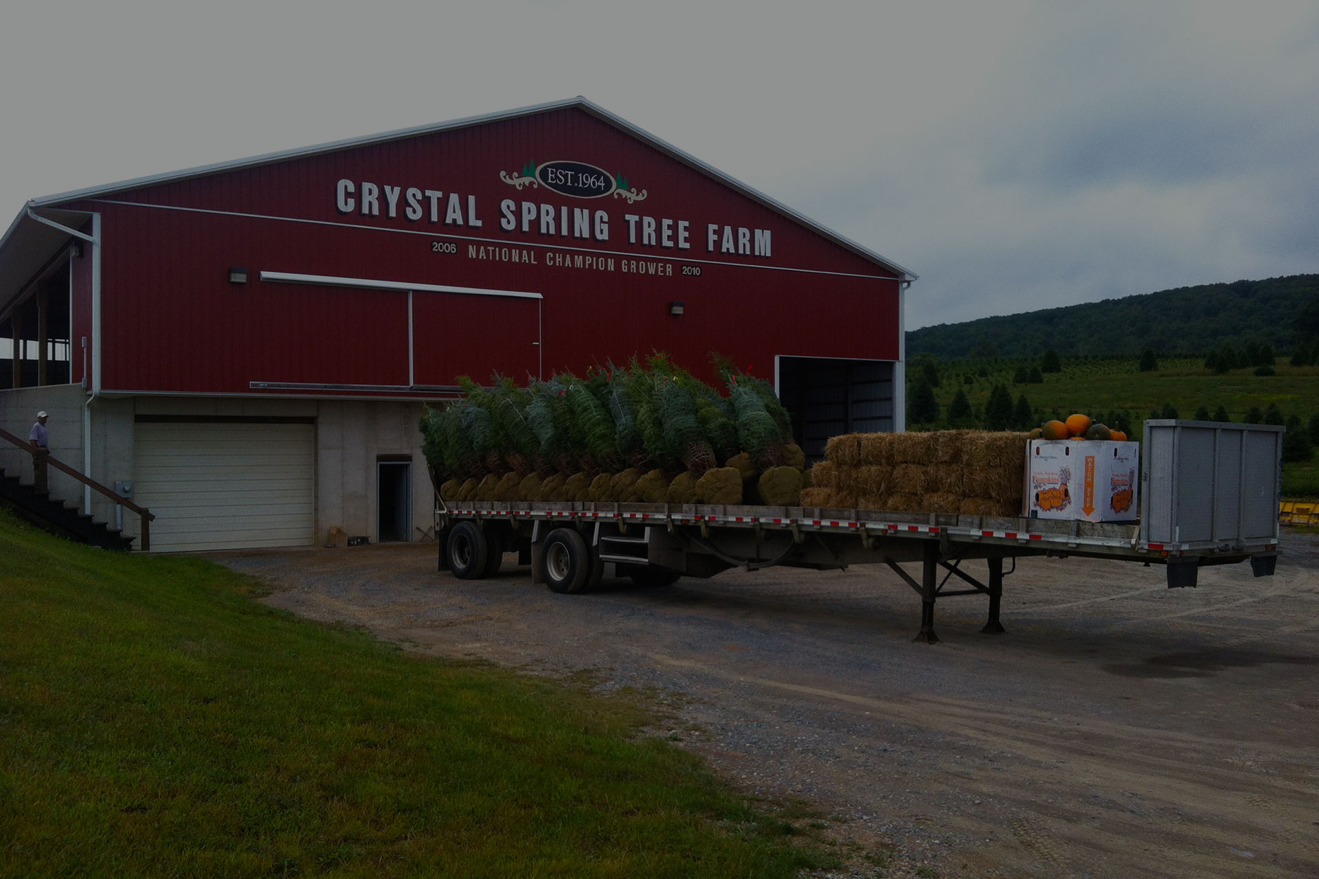 Crystal Spring Tree Farm Building with trees, hay & pumpkins