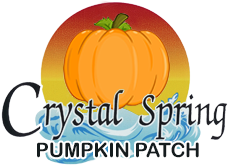 October Email - Find the Perfect Pumpkin ? 1