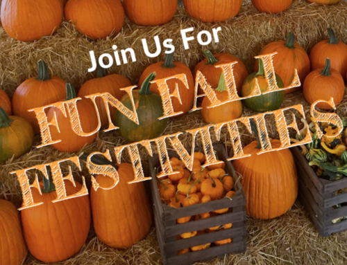 Join Us For Fun Fall Festivities! 🎃